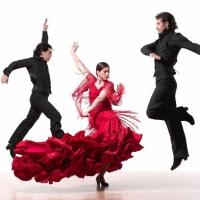 Brooklyn Center for the Performing Arts Presents Flamenco Vivo Tonight