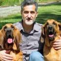 Photo Flash: A CHRISTMAS STORY Will Feature Rescued Bloodhounds Pete and Lily, Trained by William Berloni