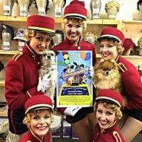 Photo Flash: Saturday Intermission Pics, 7/12- NEWSIES Prep for Sleep Out, BULLETS and MATILDA Get Excited for Broadway Barks, and More