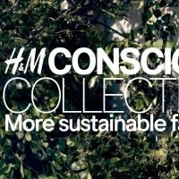 H&M Revealed as Biggest User of Certified Organic Cotton