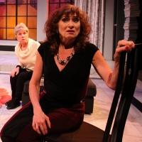 BWW REVIEW: THE TALE OF THE ALLERGIST'S WIFE Suffers from Congestion at Lyric Stage in Boston