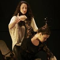 BWW Reviews: Feelings & Flamenco's Feminine Mystique