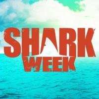 Discovery's SHARK WEEK 2014 Breaks Viewership Records