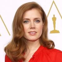 Fashion Photo of the Day 2/13/14 - Amy Adams