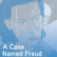 BWW Reviews: A CASE NAMED FREUD Completes Savyon Liebrecht's Trilogy