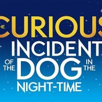 The National Theatre's Production THE CURIOUS INCIDENT OF THE  DOG IN THE NIGHT�TIME to Resume Run, 6/24