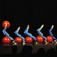 BWW Reviews: Inlet Dance Educates in Collaboration with Cleveland Museum of Natural History