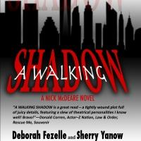 BWW Reviews: A WALKING SHADOW by Fezelle and Yanow Captivates