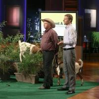 ABC's Shark Tank is Friday's #1 TV Show in Key Demo