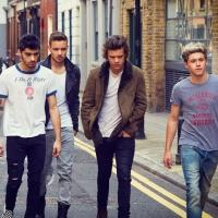 ONE DIRECTION Announce North American Leg of WHERE WE ARE 2014 Stadium Tour