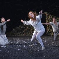 Photo Flash: First Look at Cal Shakes' A MIDSUMMER NIGHT'S DREAM