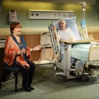 BWW Reviews: THE LYONS, Menier Chocolate Factory, September 27 2013