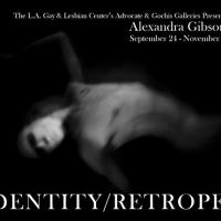 IDENTITY | RETROSPECT Exhibition on View at L.A. Gay & Lesbian Center Galleries, Now thru 11/2