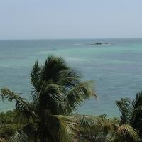 BWW Reviews: Florida Keys to My Heart