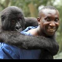 Feature Documentary VIRUNGA Premieres on Netflix Today