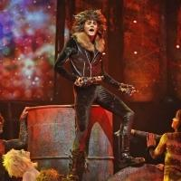 BWW Reviews: Paramount's CATS Offers High-Quality Entertainment