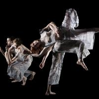 The University Musical Society Presents the Trisha Brown Dance Company This Weekend