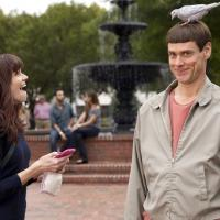 Review Roundup: DUMB AND DUMBER TO Hits Theaters - Can It Get Any Dumber?