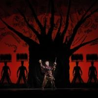 BWW Reviews: Latest Tour is LION KING Light