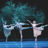 BWW Interview: Sara Webb Talks Houston Ballet's A MIDSUMMER NIGHT'S DREAM