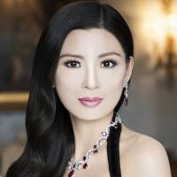 Rebecca Wang Chaired amfAR Gala 2013