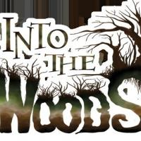 BWW Preview: INTO THE WOODS Benefit Concert for the AIDS Committee of Toronto (ACT) and MCC Toronto Refugee & Immigration Program