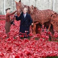 Photo Flash: WAR HORSE's Joey and Author Michael Morpurgo at the Tower of London