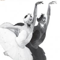 FLASH SPECIAL: A SWAN LAKE Celebration