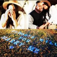 Ludacris Shares Mile-High Marriage Proposal on Instagram!
