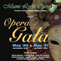 Miami Lyric Opera to Host 2015 Gala This May