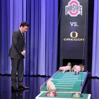 VIDEO: Puppies Predict the 2015 College Football Championship on TONIGHT