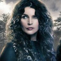 Lifetime Cancels WITCHES OF EAST END