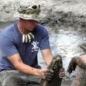 Animal Planet's GATOR BOYS Renewed for Second Season