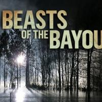 Discovery Channel Premieres All-New Program BEASTS OF THE BAYOU Tonight