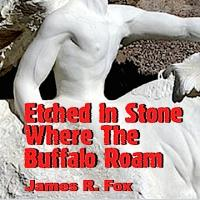 Absolutely Amazing eBooks Presents ETCHED IN STONE WHERE THE BUFFALO ROAM for $3.99 for Thanksgiving