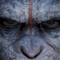 Photo Flash: First Posters for DAWN OF THE PLANET OF THE APES