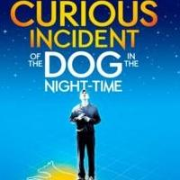 Broadway's THE CURIOUS INCIDENT OF THE DOG IN THE NIGHT-TIME Begins Rehearsals Today