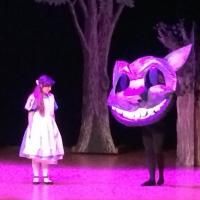 BWW Reviews: Effort and Love in ALICE IN WONDERLAND