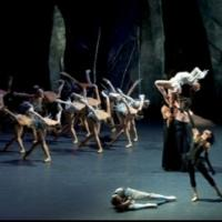 Les Ballets de Monte-Carlo Returns to Segerstrom Center with LAC, Now thru 3/9