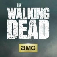 Cast of AMC's THE WALKING DEAD Visit Comic Con 2014