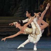 BWW Reviews: LA Ballet Premieres a Spectacular THE SLEEPING BEAUTY