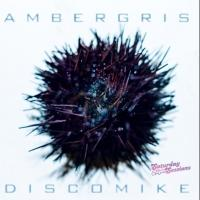 Disco Mike Releases 'Ambergris' Single