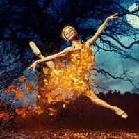 BWW Reviews: Wheeldon's CINDERELLA Meanders and Misses the Mark