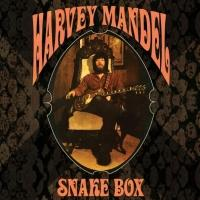 Blues Guitarist Harvey Mandel to Release Early Solo Albums In 6CD Box Set