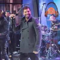 VIDEO: Ricky Martin Performs New Single 'Adios','Vida Loca' & More on TODAY