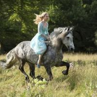 Photo Flash: First Look - Kenneth Branagh's Live Action CINDERELLA, Coming in 2015