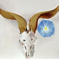 Featured Art Exhibition: 'Georgia O'Keeffe in New Mexico' at the Denver Art Museum