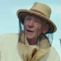 VIDEO: First Look - Ian McKellan in Teaser Trailer for MR. HOLMES