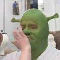 STAGE TUBE: Jason Marks Goes Green for Virginia Rep's SHREK: THE MUSICAL