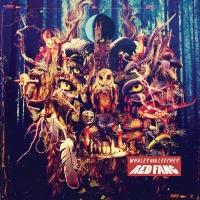 Red Fang Set Releases New Album 'Whales and Leeches' Today